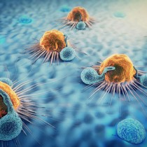 Navigating complexity of cell therapy manufacturing during the COVID-19 pandemic