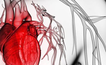 Cardiovascular medical devices